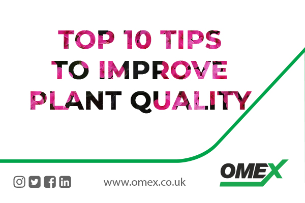 Top 10 Tips To Improve Plant Quality