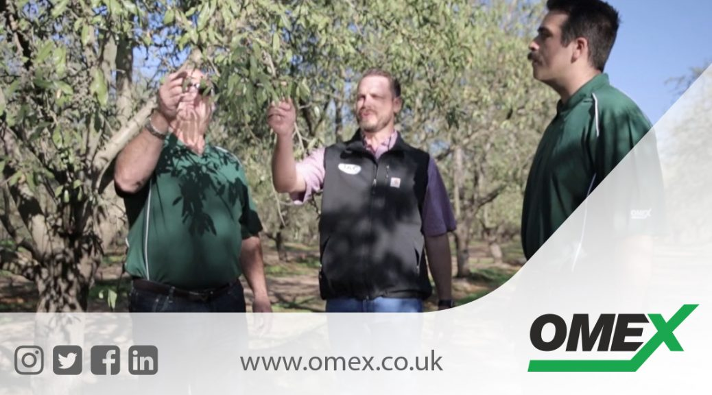 Grow With OMEX USA