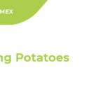 Growing potatoes cover image