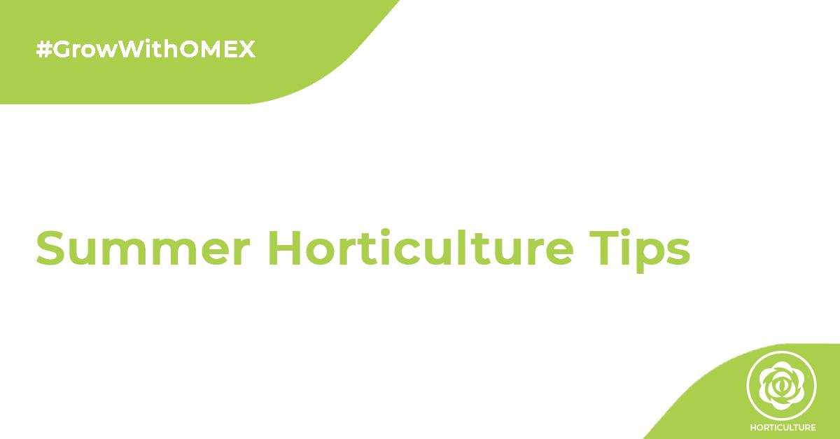 Summer Horticulture Tips