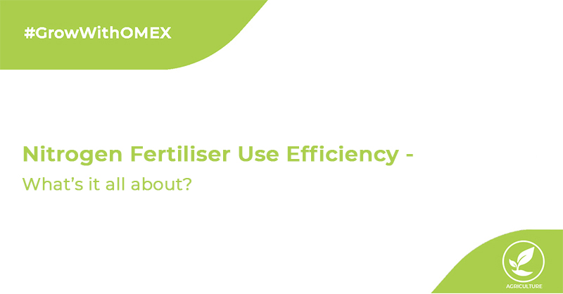 Nitrogen Fertiliser Use Efficiency