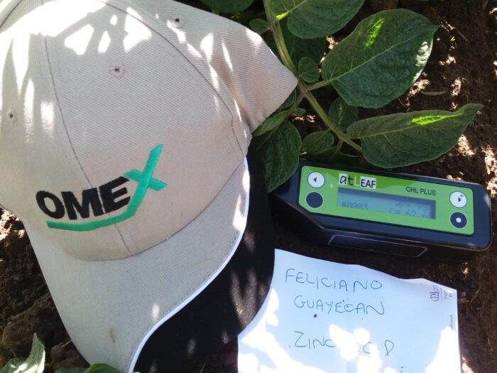 chlorophyll test results, Zinc Prod