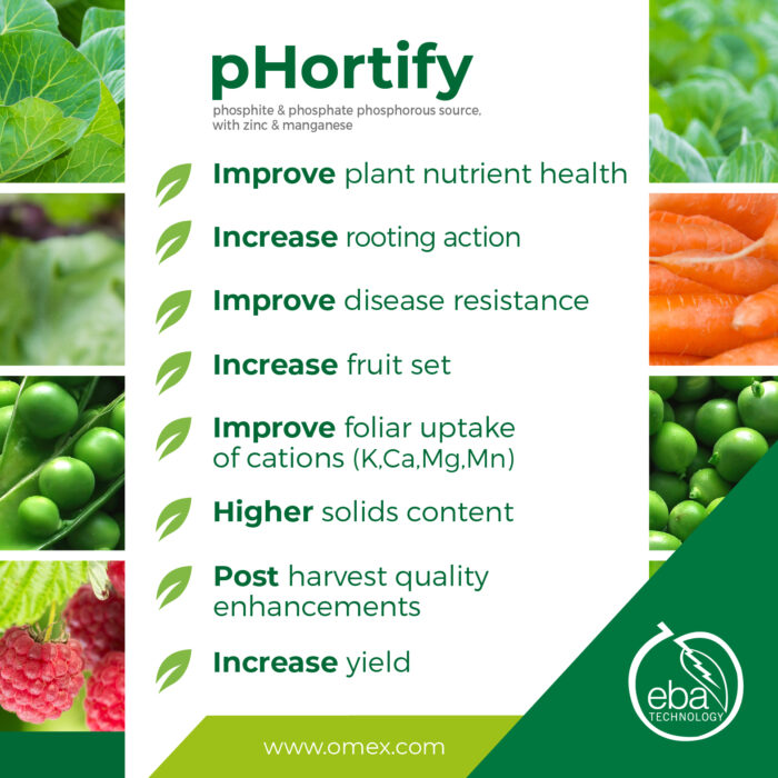 benefits of phortify a plant health promoter, plants