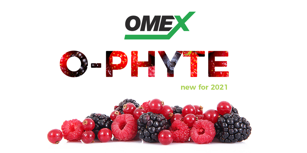 Introducing O-Phyte
