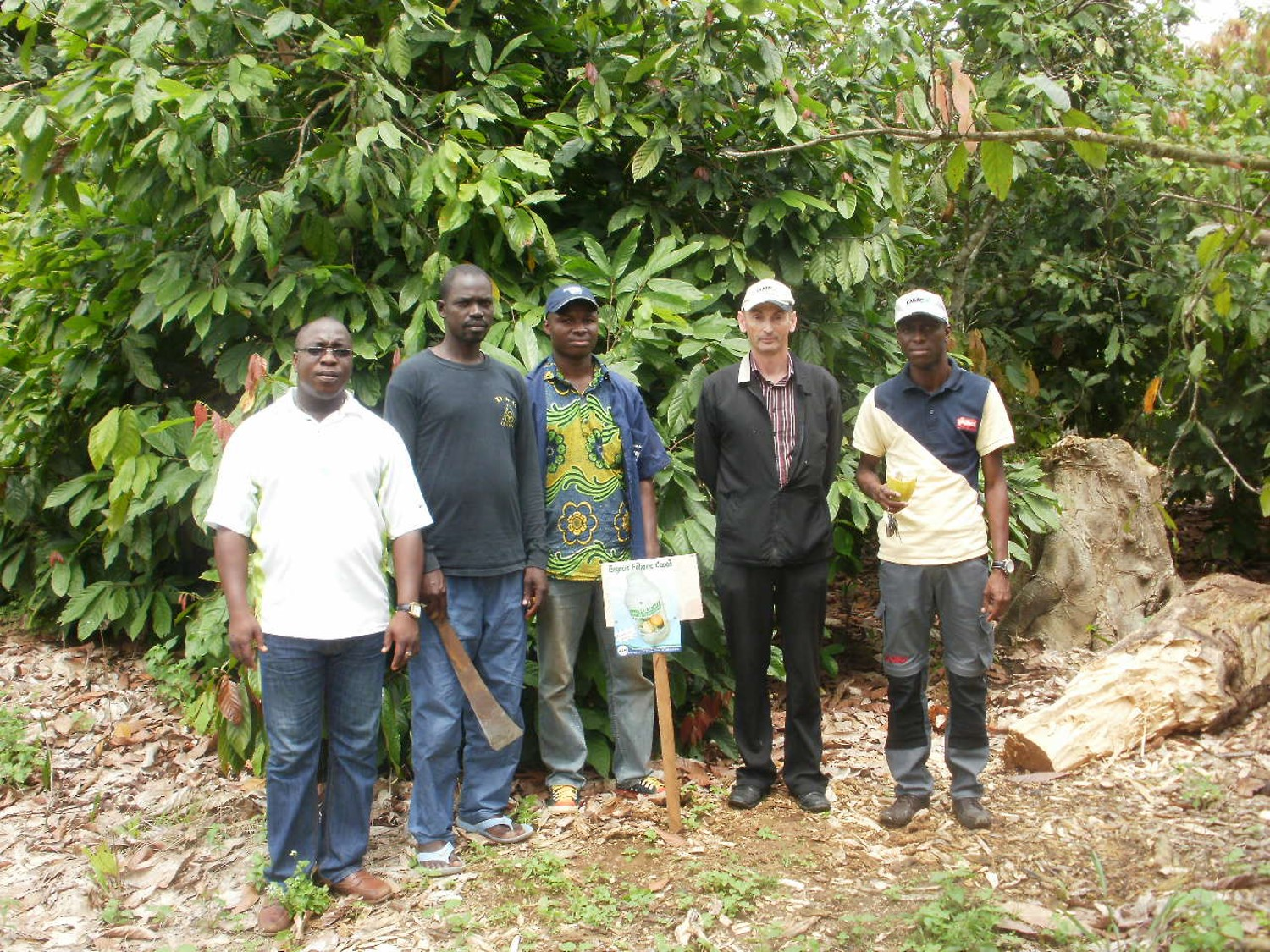 cocoa growers