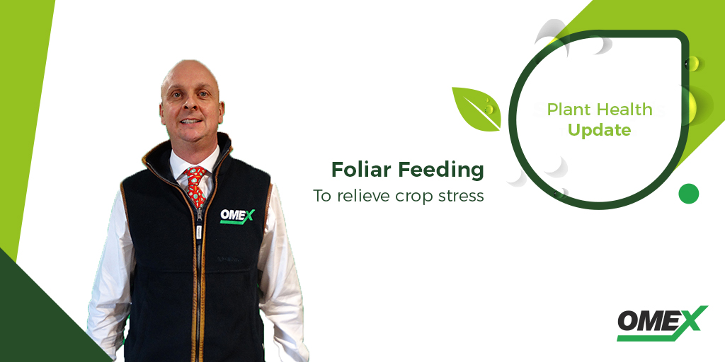 Foliar Feeding to relieve crop stress
