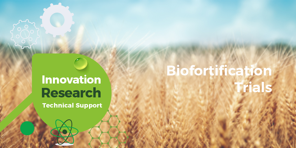 Biofortification on Winter Wheat