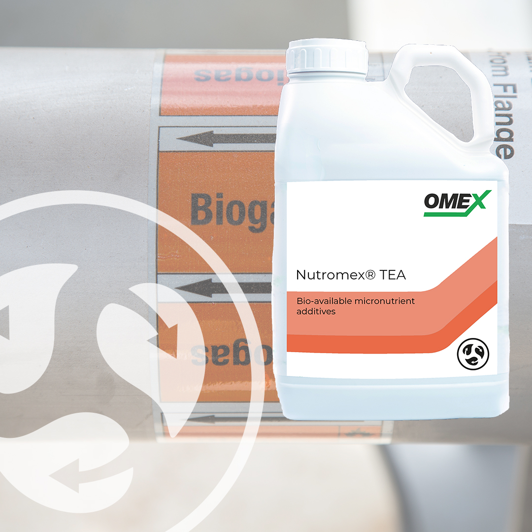 Proven results with Nutromex TEA