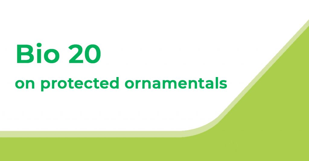 Bio 20 on Protected Ornamentals