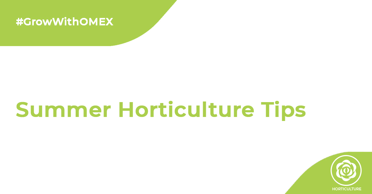 Summer Horticulture Tips